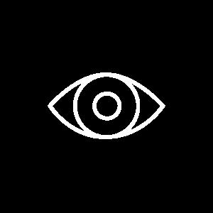 Visuele_com-eye